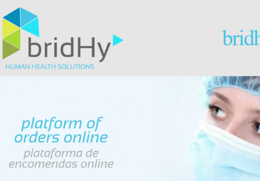 Bridhy-Website